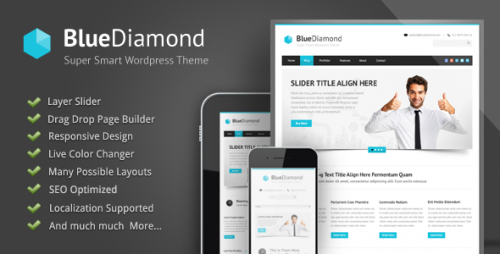 Blue Diamond Corporate WP Theme