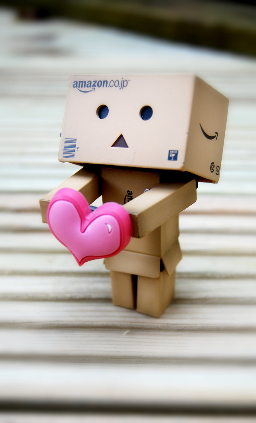 The Reliable Examples of Danbo Photography