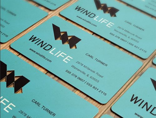 Windlife Business Card