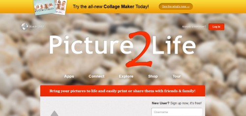 Picture2Life