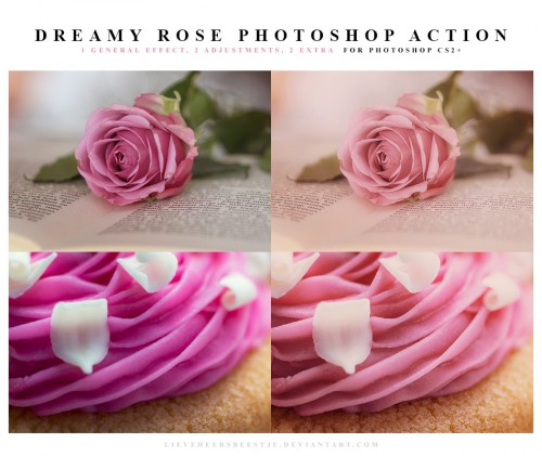 Dreamy Rose Photoshop Action